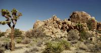 Panning shot of little rock hill in desert landscape with spiny plants in foreground in 4K