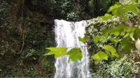 Waterfall And Blurred Leaves In Foreground