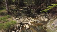 Back fly over a creek in 4K