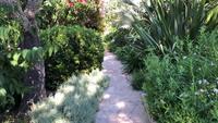 Går genom en trädgård i 4K