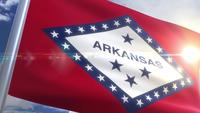 Waving flag of the state of Arkansas USA