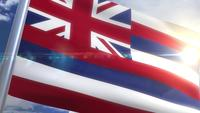 Waving flag of the state of Hawaii USA