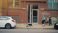 Women And Her Pets Walking On Sidewalk In Chicago