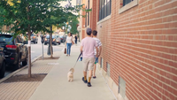 People And Little Dog Walking On Sidewalk In Chicago