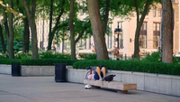 Man Lying Reading On Park Bench