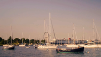 Sailing Boats And Cruise Ship In Monroe Harbor Chicago