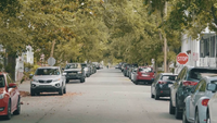 Handheld Clip Of A Street With Cars And Beautiful Trees