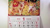 Calendário Chinês Ano Novo Terra Porco