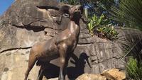 Estatua de carnero y hábitat en el zoológico