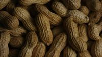 Cinematic, rotating shot of peanuts on a white surface - PEANUTS 020