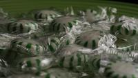 Rotating shot of spearmint hard candies - CANDY SPEARMINT 016