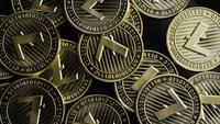 Roterende opname van Bitcoins (digitale cryptocurrency) - BITCOIN LITECOIN 228