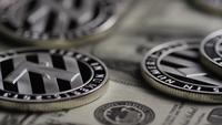 Drehende Aufnahme von Bitcoins (digitale Kryptowährung) - BITCOIN LITECOIN 620