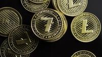 Disparo giratorio de Bitcoins (criptomoneda digital) - BITCOIN LITECOIN 343