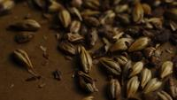 Rotating shot of barley and other beer brewing ingredients - BEER BREWING 080