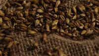 Rotating shot of barley and other beer brewing ingredients - BEER BREWING 234