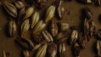 Roterend schot van gerst en andere ingrediënten voor het brouwen van bier - BIERENWINKELEN 074