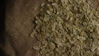 Rotating shot of barley and other beer brewing ingredients - BEER BREWING 288