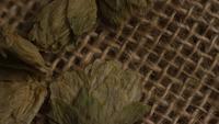 Roterend schot van gerst en andere ingrediënten voor het brouwen van bier - BIEREN 259