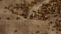 Rotating shot of barley and other beer brewing ingredients - BEER BREWING 241