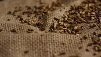 Plan tournant de l'orge et d'autres ingrédients brassicoles - Bière Brewing 241