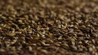Rotating shot of barley and other beer brewing ingredients - BEER BREWING 107