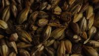 Coup de feu tournant de l'orge et d'autres ingrédients brassicoles - Bière Brewing 072
