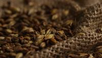 Rotating shot of barley and other beer brewing ingredients - BEER BREWING 243
