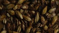 Rotating shot of barley and other beer brewing ingredients - BEER BREWING 078