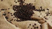Roterande skott av korn och andra ölbrödningsingredienser - ÖRBRÄNGNING 197