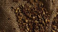 Plan tournant de l'orge et d'autres ingrédients brassicoles - Bière Brewing 224