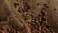 Roterend schot van gerst en andere ingrediënten voor het brouwen van bier - BIEREN 233
