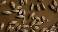 Plan tournant de l'orge et d'autres ingrédients brassicoles - Bière Brewing 136