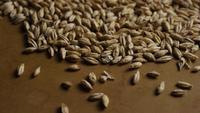 Plan tournant de l'orge et d'autres ingrédients brassicoles - Bière Brewing 120