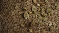 Plan tournant de l'orge et d'autres ingrédients brassicoles - Bière Brewing 249