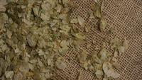 Roterend schot van gerst en andere ingrediënten voor het brouwen van bier - BIEREN BROUWEN 289