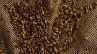 Roterend schot van gerst en andere ingrediënten voor het brouwen van bier - BIEREN BROUWEN 222