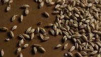 Rotating shot of barley and other beer brewing ingredients - BEER BREWING 139