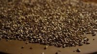 Rotating shot of barley and other beer brewing ingredients - BEER BREWING 104
