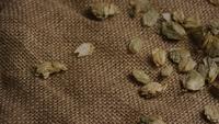 Roterande skott av korn och andra ölbrödningsingredienser - ÖRBRÄDD 263