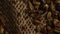 Roterande skott av korn och andra ölbrödningsingredienser - ÖRBRÄDD 226
