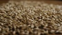 Rotating shot of barley and other beer brewing ingredients - BEER BREWING 129