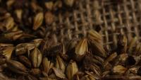 Rotating shot of barley and other beer brewing ingredients - BEER BREWING 236