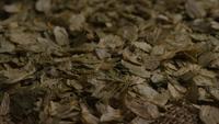 Plan tournant de l'orge et d'autres ingrédients brassicoles - Bière Brewing 298