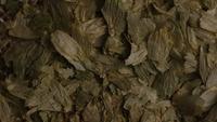 Roterend schot van gerst en andere ingrediënten voor het brouwen van bier - BIEREN 292