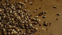 Rotating shot of barley and other beer brewing ingredients - BEER BREWING 088