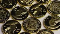 Tiro giratorio de Titan Bitcoins (criptomoneda digital) - BITCOIN TITAN 055