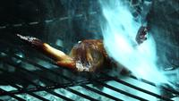 BBQ Chicken Chicken Wings in ultra slow motion (1.500 fps) op een Wood Smoked Grill - BBQ PHANTOM 009