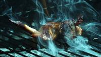 BBQ Chicken Kippenvleugels roosteren in ultra slow motion (1.500 fps) op een Wood Smoked Grill - BBQ PHANTOM 010