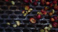 Våt process med kaffebönor som nyligen är mogna från kaffeträd